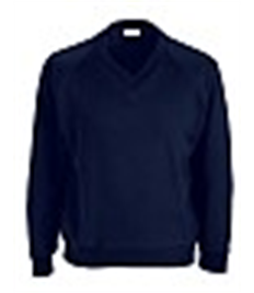 BH V-Neck Sweatshirt Child
