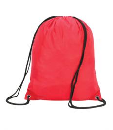 APS PE Bag